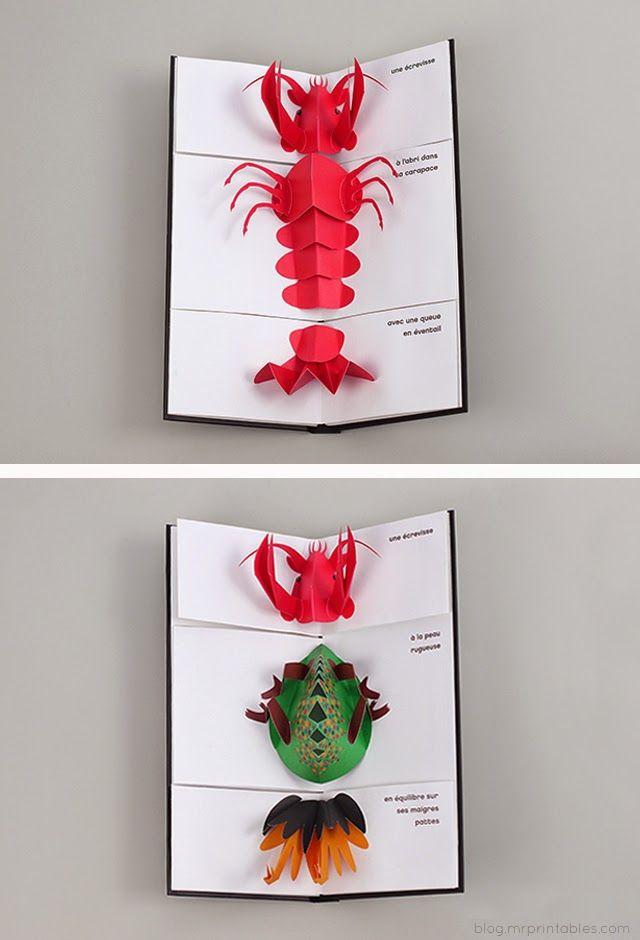 Design dla dzieci i nie tylko...: Carnaval Animal - książka pop-up (Iris De Vericourt)