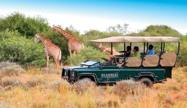 Shamwari Private Game Reserve  Once in a lifetime moment. I can't wait!!