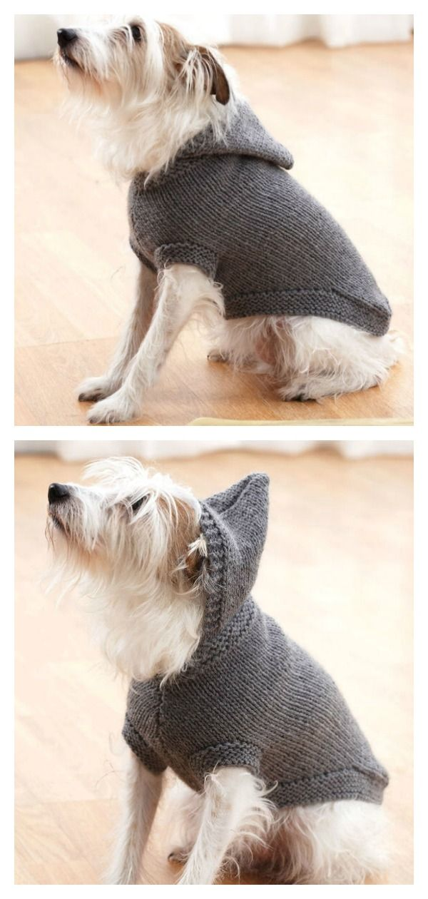 Dog Coat Free Knitting Pattern in 2020 (With images) | Dog ...