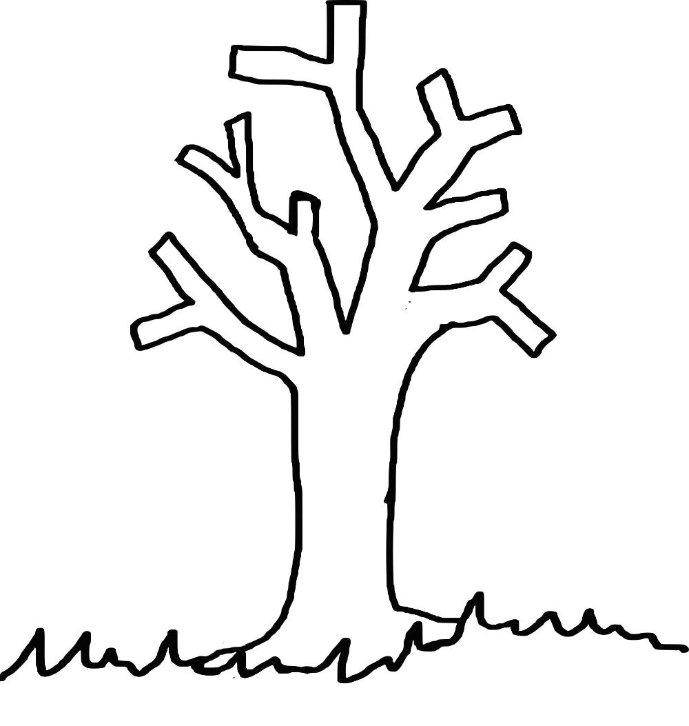 Coloriage Arbre Sans Feuille Imprimer Sur Coloriages Info Avec Et Dessin De Feuille D Arbre Imprimer 32 Arbre Sans Coloriage Arbre Coloriage Info Feuille Arbre