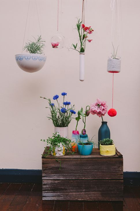 Des plantes à accrocher - Lili in wonderland