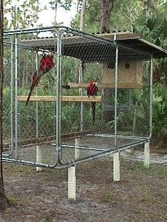 Macaw Aviary Macaw cage, Diy bird cage, Pet bird cage