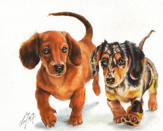 Original Dog Oil Portrait Painting Dachshund Puppies Artwork From