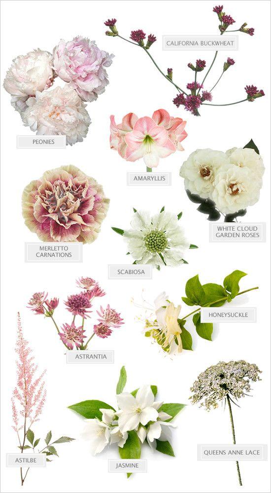 Wild Spring Blooms Bouquet Flower Namesbride