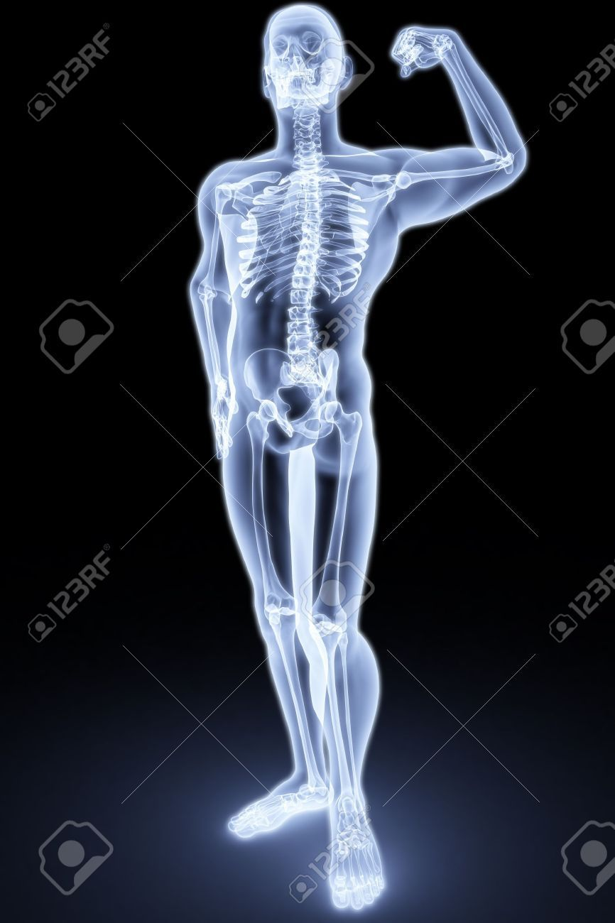 Two Person Yoga Poses X Ray