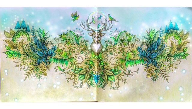 Deer Enchanted Forest Coloring Pages Zeichnungen Wenn