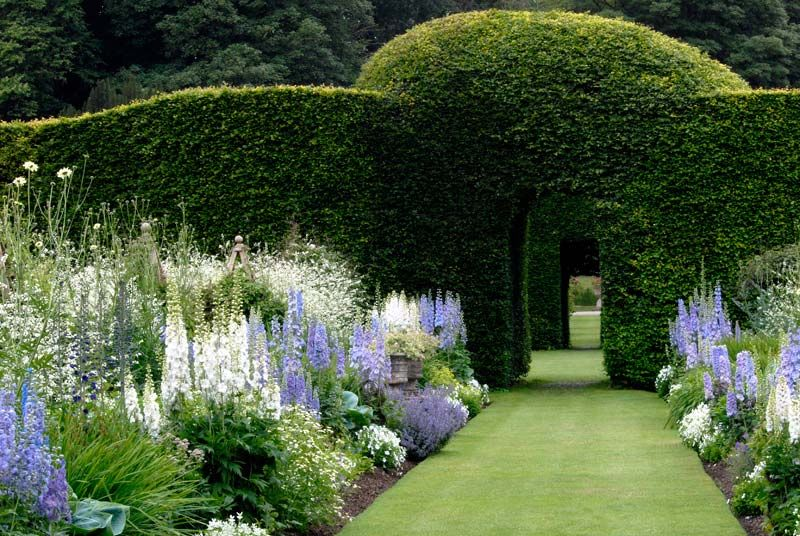 Levens Hall   Gorgeous Blue And White Border #gardendesign  #landsapearchitecture