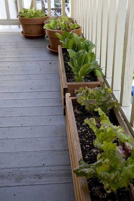 Charming Love The Idea Of Planters For Base Of Front Porch Railing. Do This For Herbs.  Growing ...