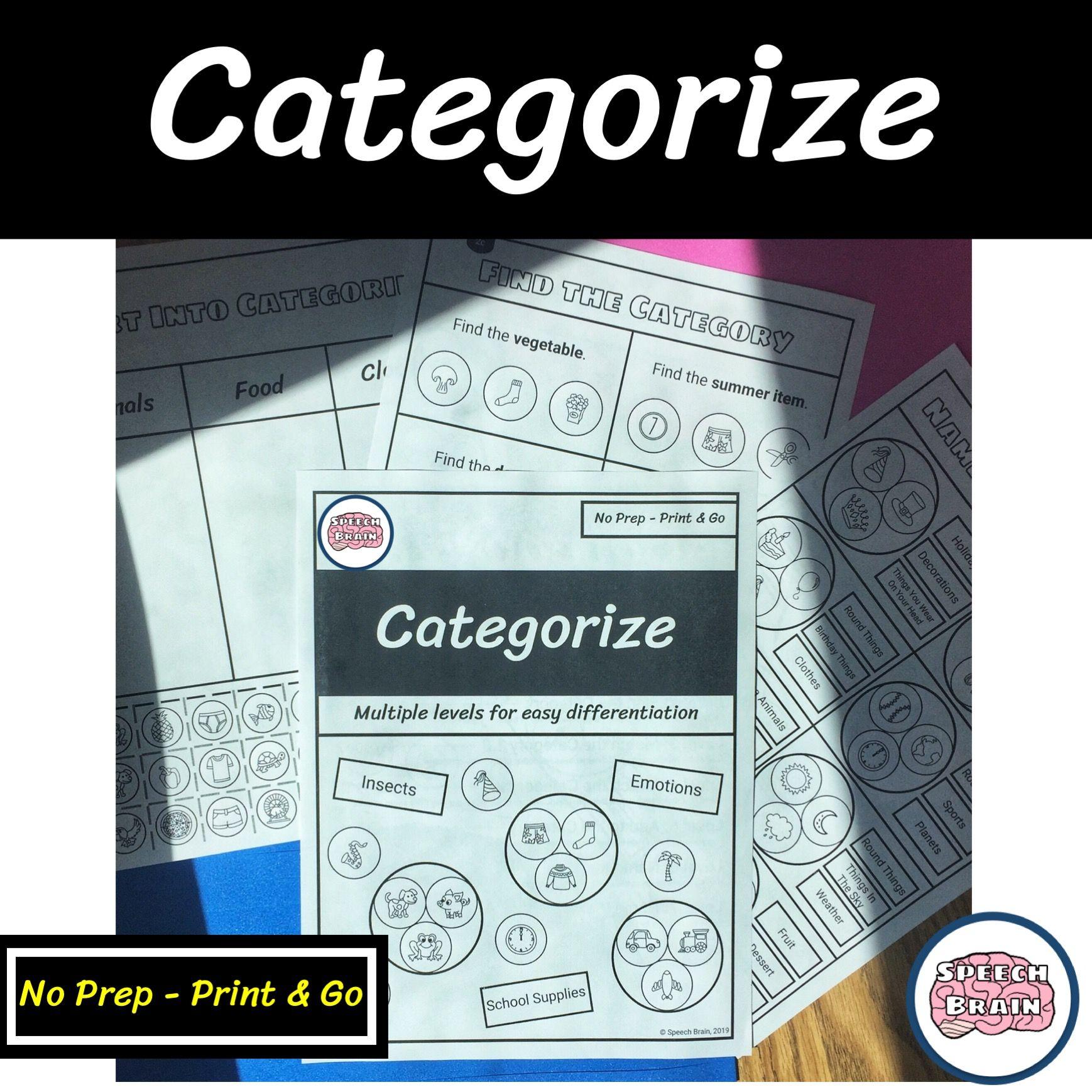 Categorize No Prep Leveled Worksheets For Categories