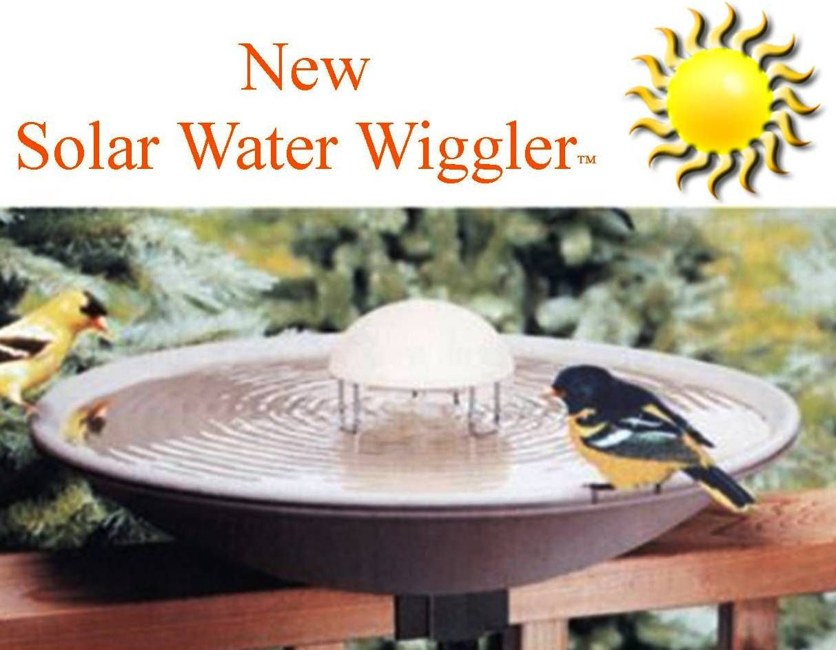 Water Wiggler This Is A Bird Bath Must Have Keeps