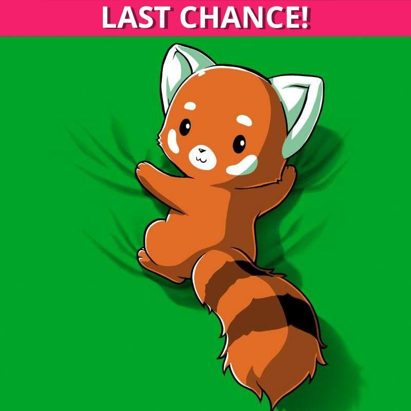Red Panda On Your Back Panda Art Cute Drawings Panda Drawing