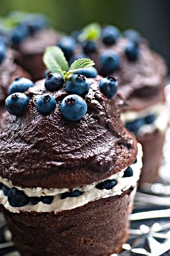blueberry and chocolate cupcakes