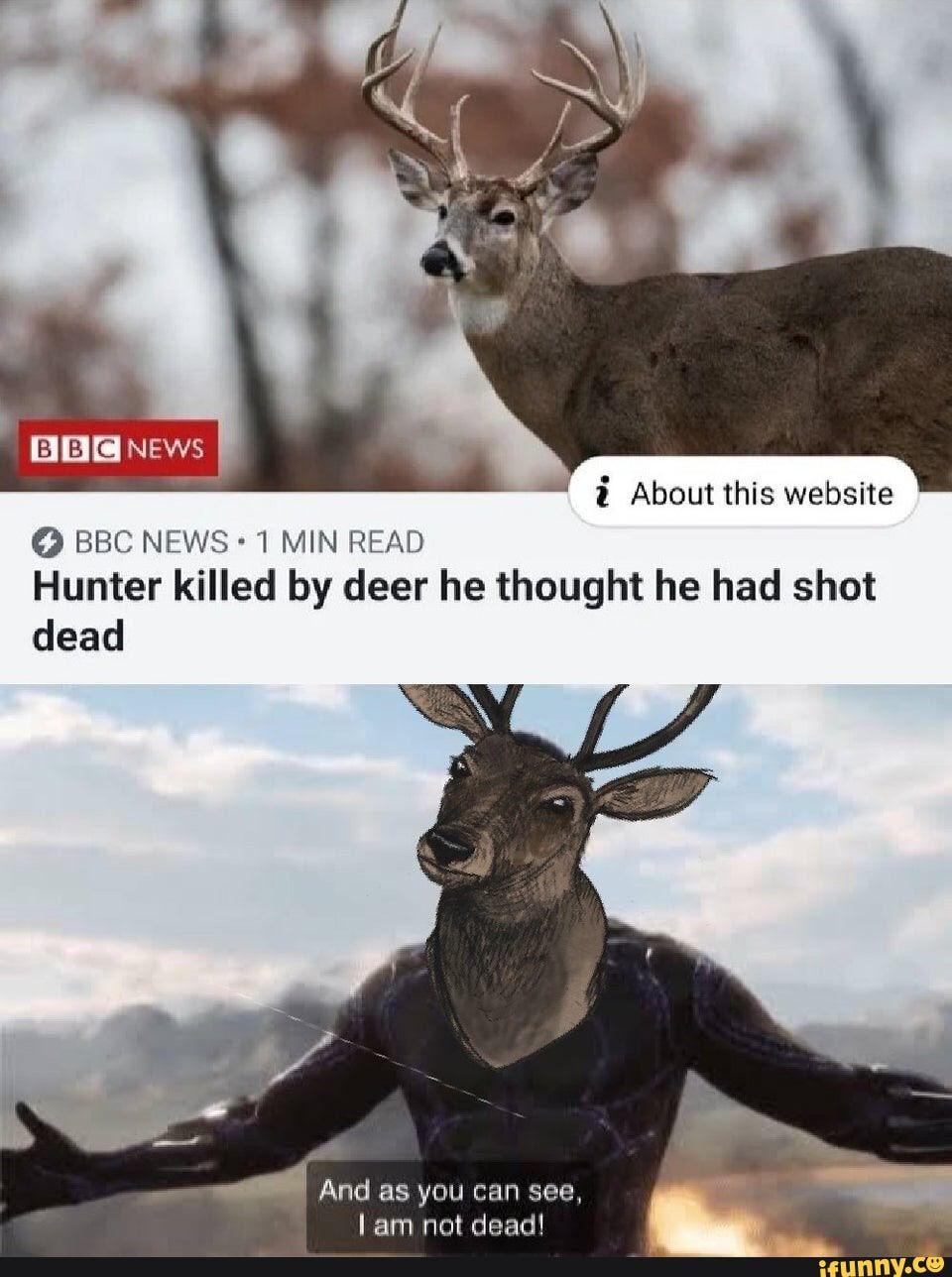 Grassley Revives 'Assume Deer Dead' Meme... | Talking Points Memo