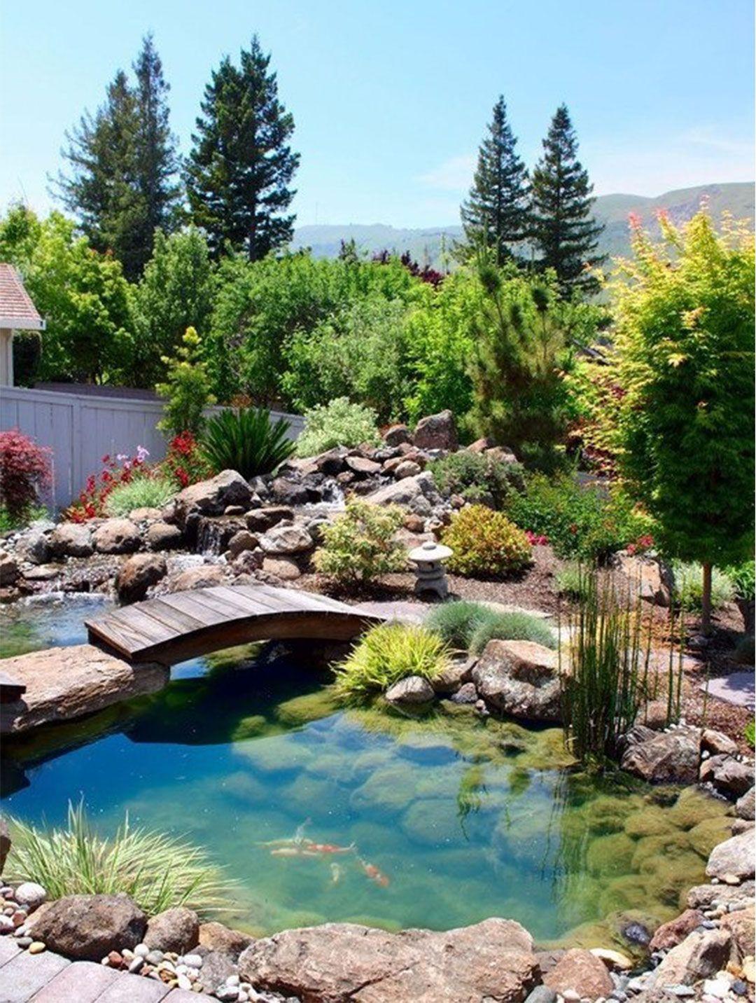 backyard pond design ideas 2014 jardin garden pinterest