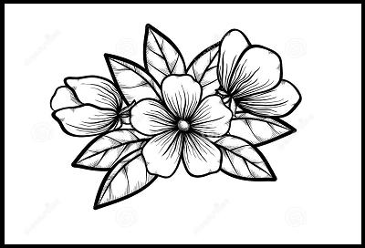Como Dibujar Flores Faciles A Lapiz Flores Faciles De Dibujar
