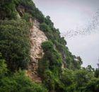 Bokor Mountan View 3