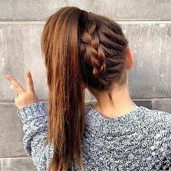 tresses et queue de cheval | Style de cheveux, Coiffure facile, Belle coiffure