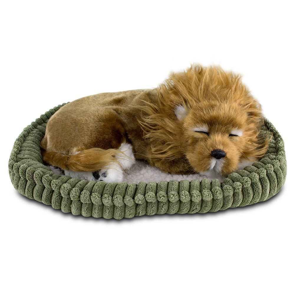 Perfect Petzzz Huggable Plush Lion The Perfect Petzzz Huggable Plush Lion offers a real pet ownership experience without the hassles and expense. Say goodbye to feedings and vet bills, and say hello to lots of love and cuddles. This lion offers a realistic experience for you and your family because it features quiet and realistic breathing, is huggable so you can enjoy warm cuddles, and has fur that's 100 percent synthetic so there is no need to worry about allergies. Each bundle includes a…