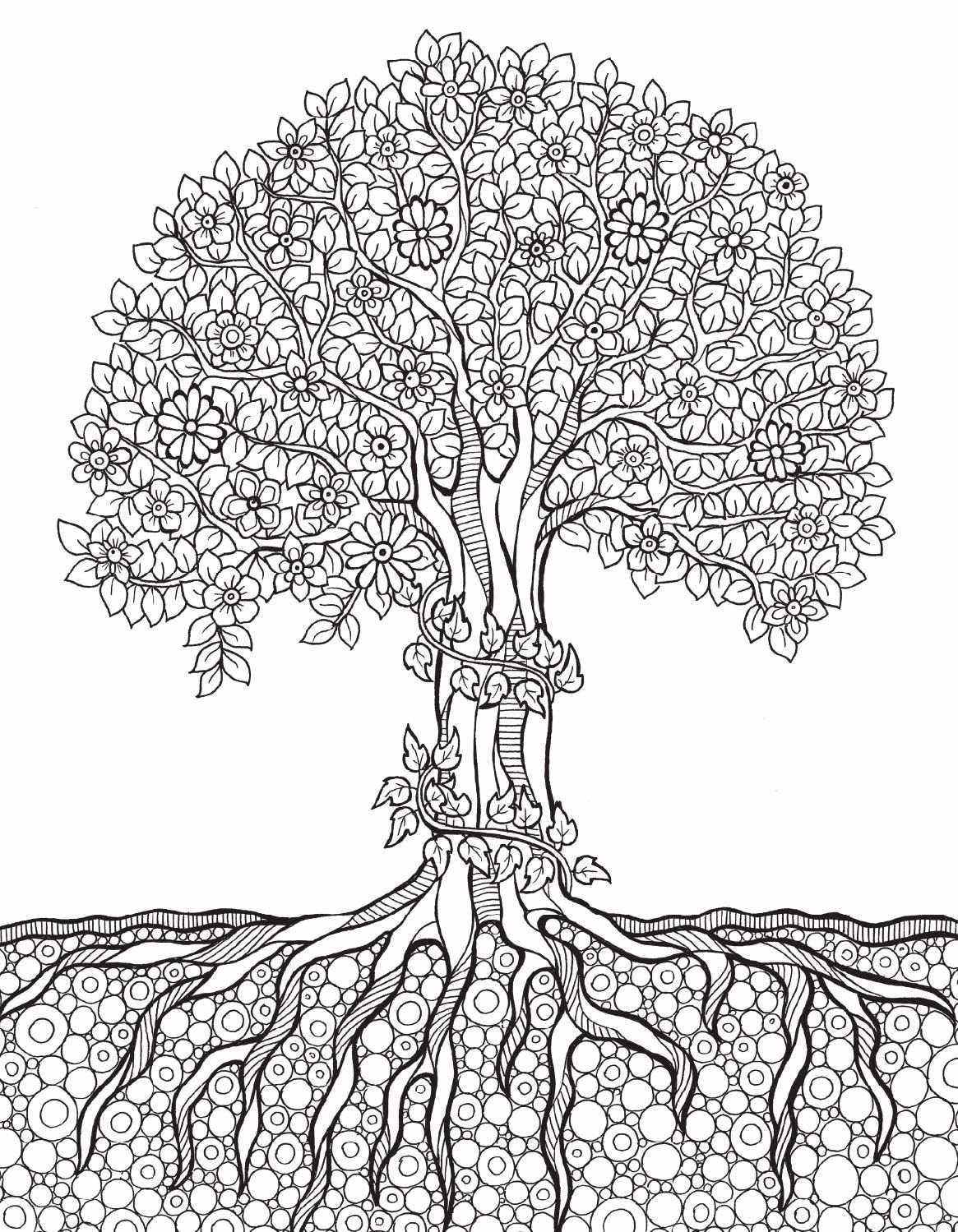 Tree Coloring Pages For Adults Unique Of Tree And Roots Coloring Pages Sabadaphnecottage Mandala Coloring Pages Tree Coloring Page Mandala Coloring