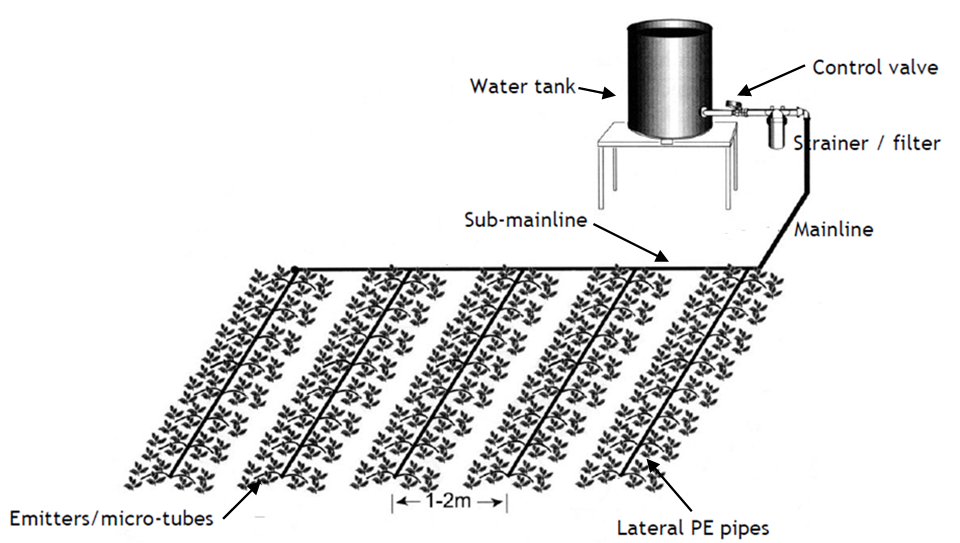 Gravity Irrigation Design Of A Low Cost Drip System