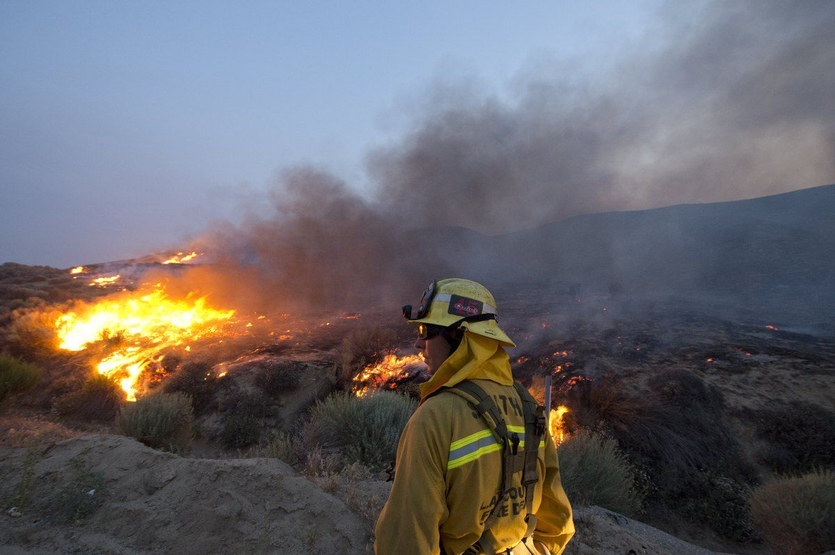Wildfire Explodes In Size Overnight Endangered Animals Lake Hughes Photo