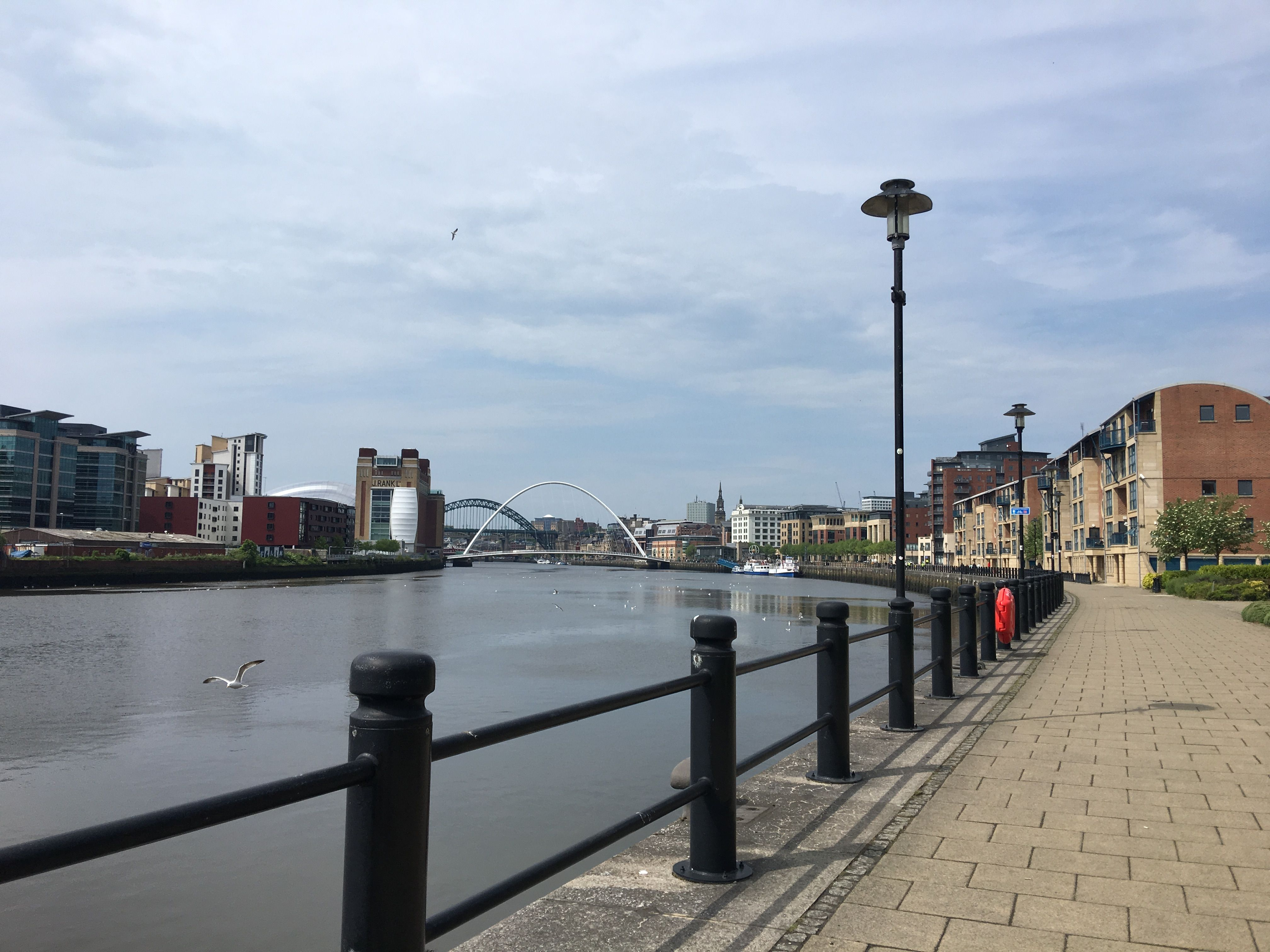 Newcastle Castle - Empnefsys & Travel