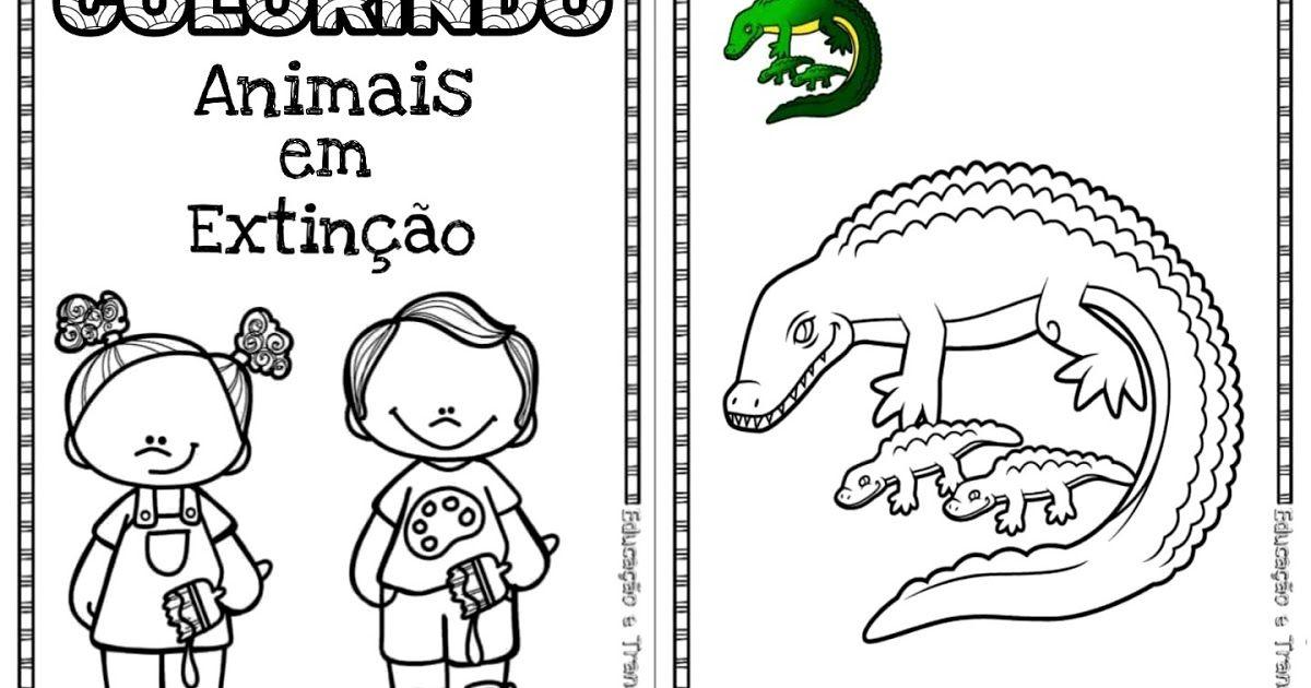 Livrinho Para Colorir Algumas Especies De Animais Ameacados De