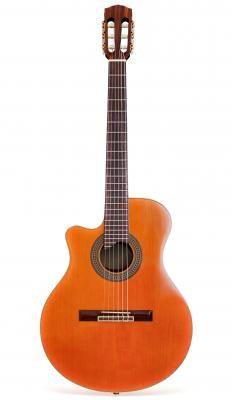 An acoustic guitar.