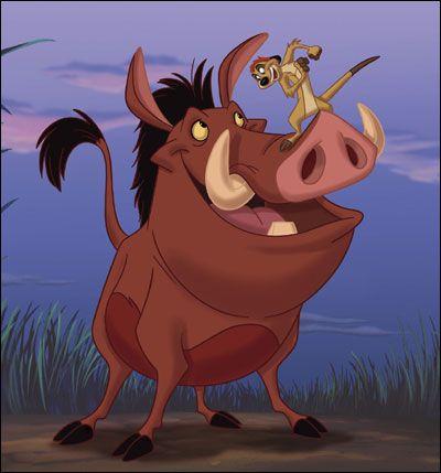 Day 1 5 30 Day Disney Photo Challenge Timon Y Pumba Dibujos De Personajes De Disney Pumba