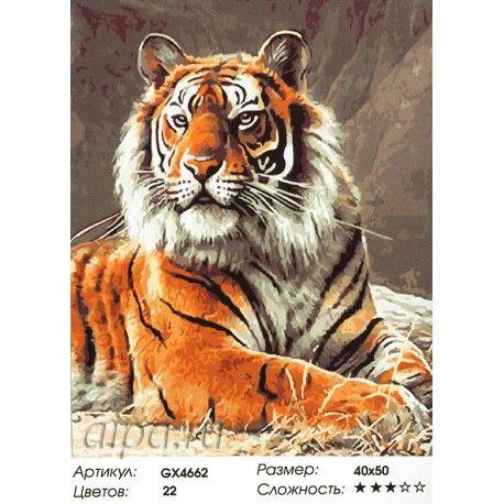 картина по номерам тигр - Поиск в Google | Картины, Тигр