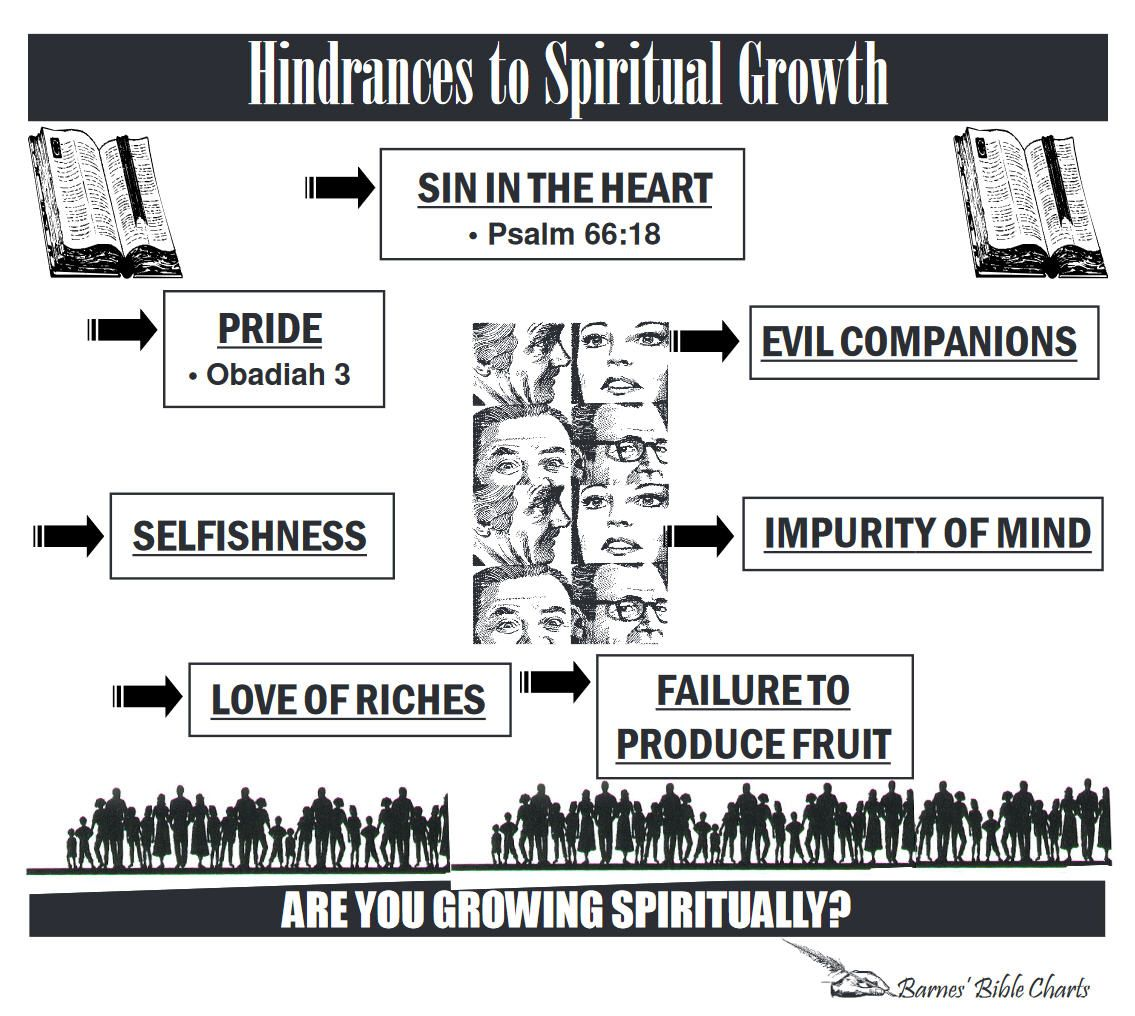 Hindrances To Spiritual Growth Bible Studies Pinterest