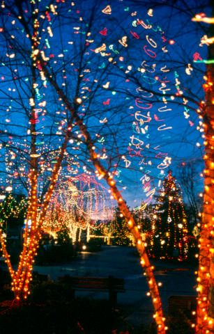 Holiday Spirit Hits A Little Sooner Than Usual Scenic Railroads Christmas In The City Columbus Zoo