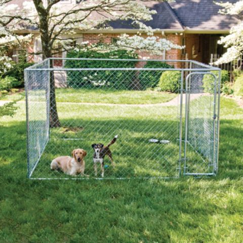Pet Safe Do It Yourself Dog Kennel 10 Ft W X 10 Ft L X 6 Ft H Tractor Supply Co 199 Dog Kennels For Sale Dog Kennel Run Dogs