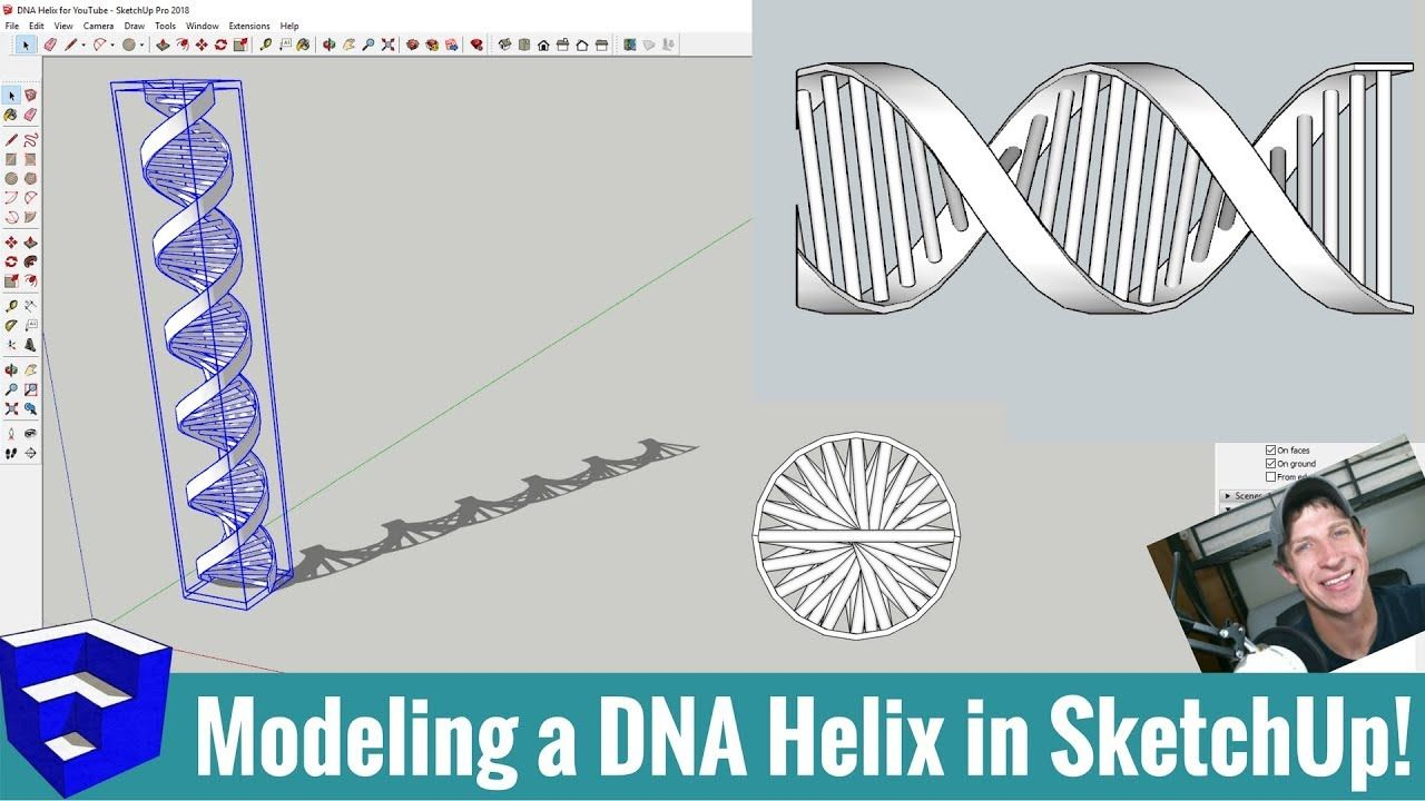 Modeling A Dna Helix In Sketchup With Curviloft And Helix Along