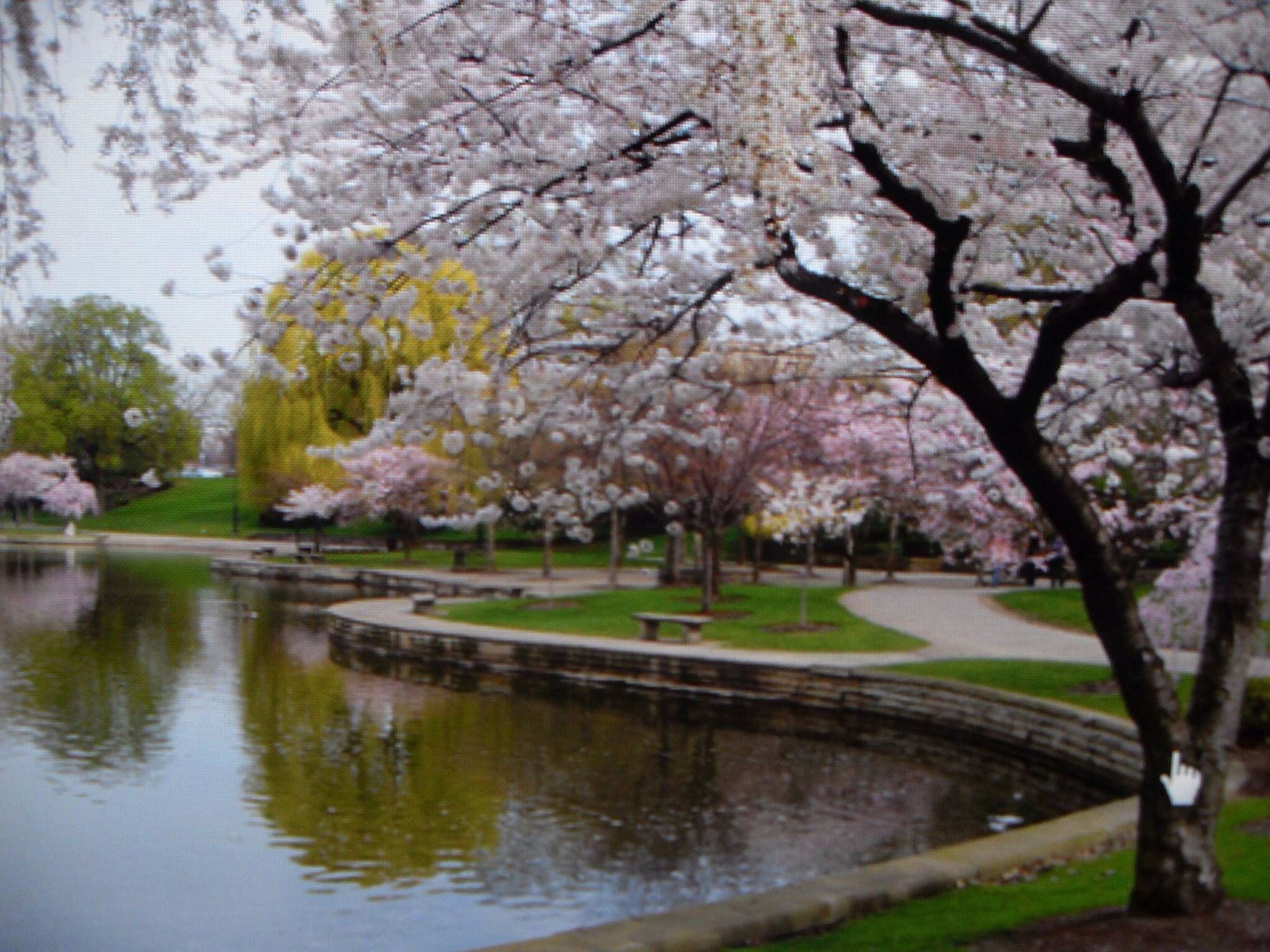 Wade Park Lagoon In Front Of Severance Hall The Art Museum Cleveland Ohio University Circle Beautiful Sites Cleveland