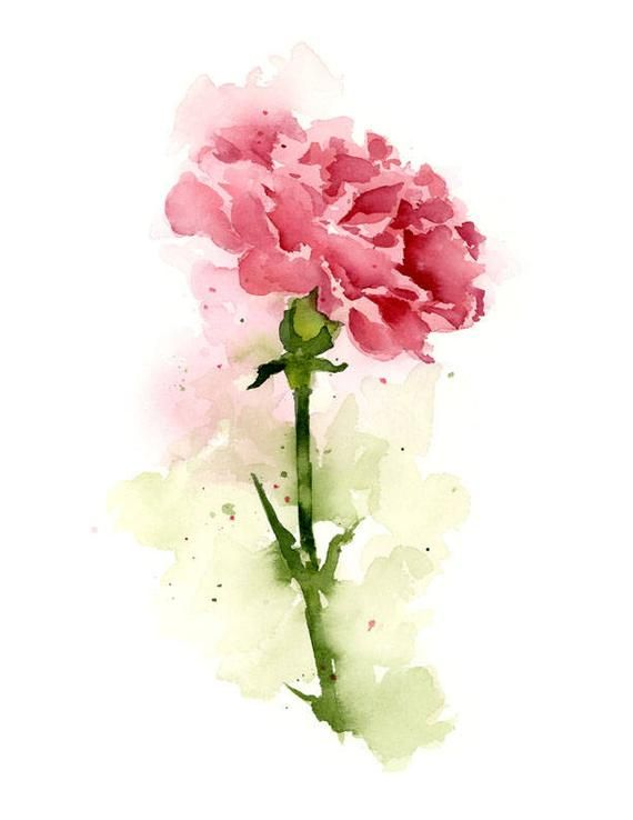 Carnation Flower Pink Carnation Art Print Flower Wall Decor Floral Watercolor Painting Floral Watercolor Paintings Floral Watercolor Carnation Flower