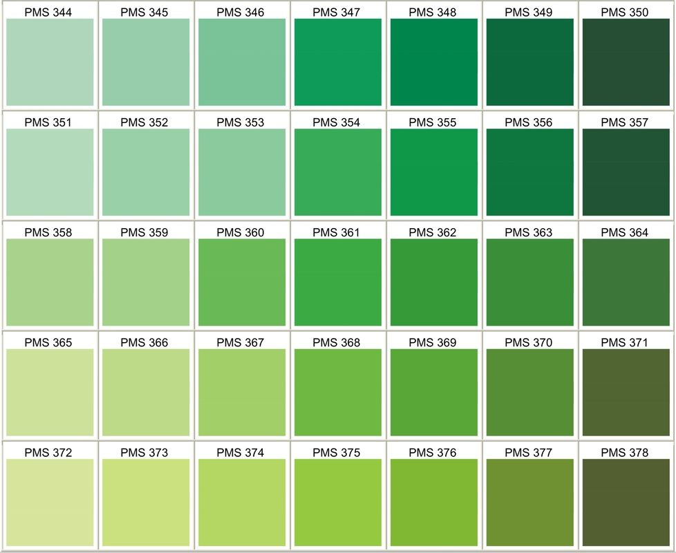 Pantone Color Various Greens - Use 361?   Festive ...   978 x 800 jpeg 100kB