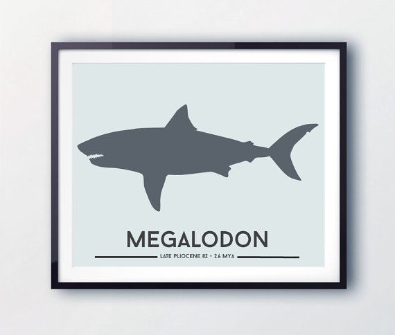 Megalodon Shark Print Toddler Boy Dinosaur Nursery Decor