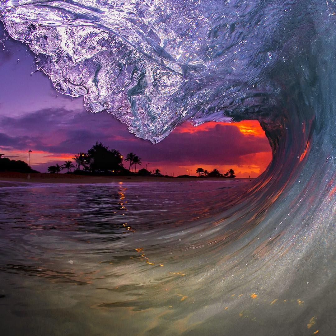 """""""Yesterday's sunrise was firing.  For all those who missed it, your blowing it @truehonor #TeamDaFin @bombereyewear"""""""