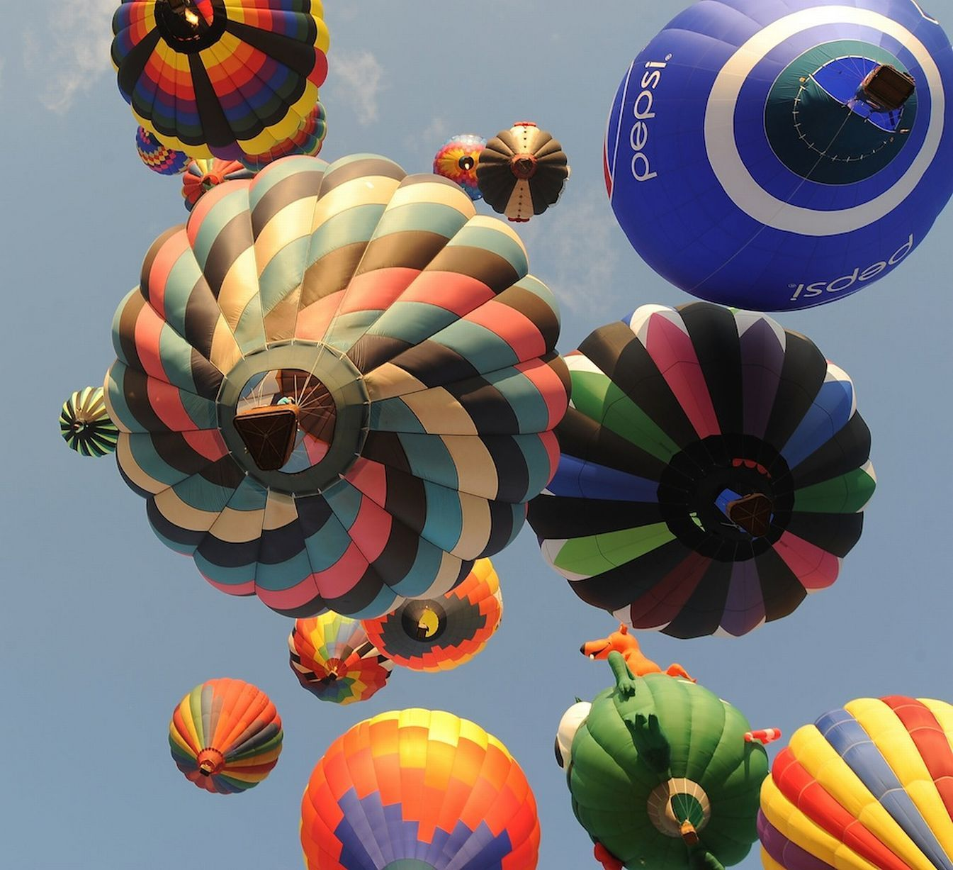 Stunning themed hot air balloon pictures will take your