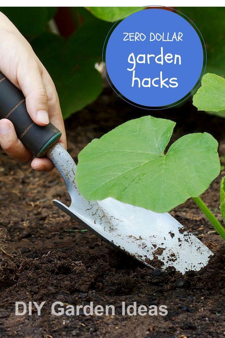 New 35+ Creative Garden Hacks and Tips diygarden