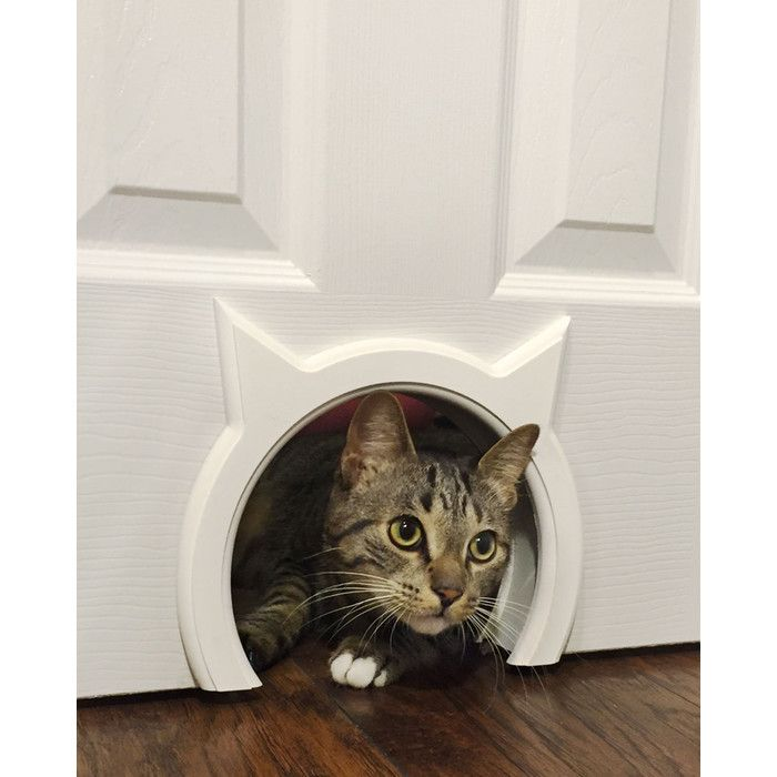 You Ll Love The Interior Cat Door At Wayfair Great Deals On All Pets S With Free Most Stuff Even Big