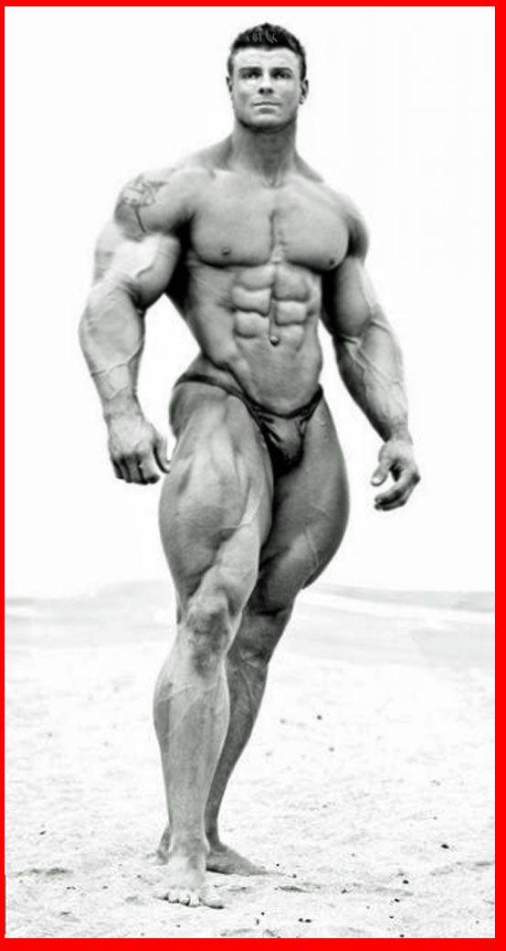Muscle_bastian