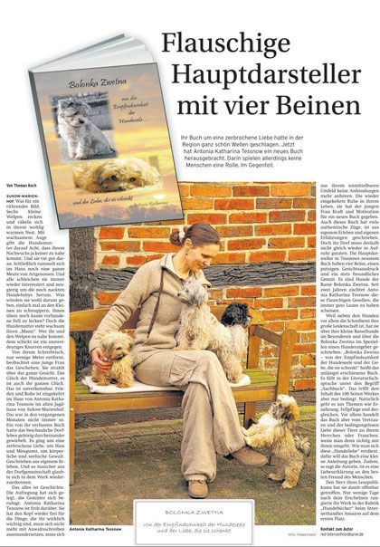 Pin Von Antonia Katharina Tessnow Auf Good Reads Bolonka Hunde Bolonka Zwetna