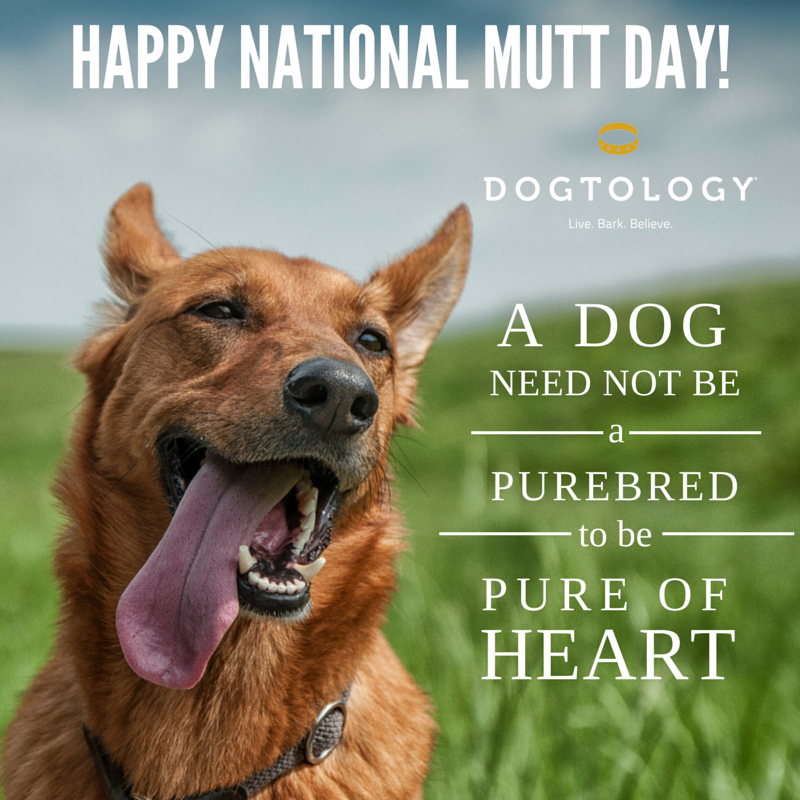 Happy National Mutt Day National mutt day, Puppy quotes