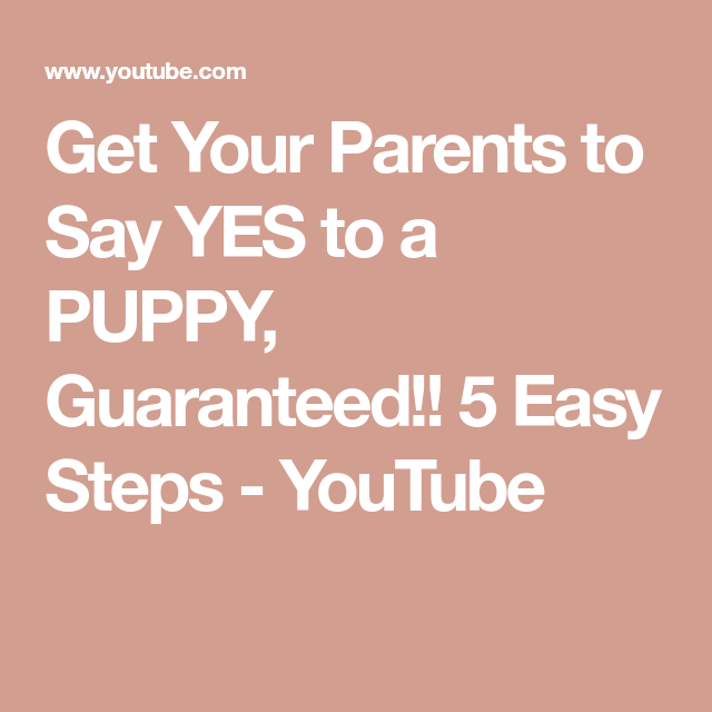 Get Your Parents To Say Yes To A Puppy Guaranteed 5 Easy Steps Youtube Puppies Sayings Rescue Puppies