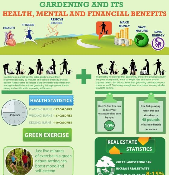 Gardening and its health mental and financial benefits 1 for Gardening qualifications
