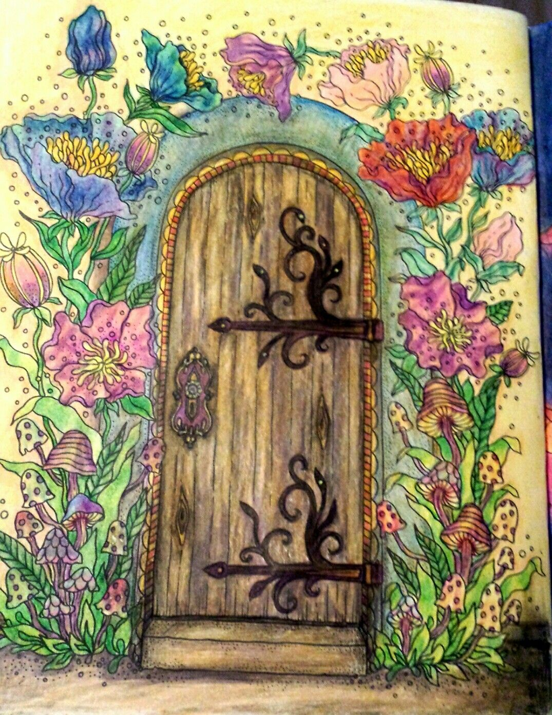 Summer nights by hanna karlzon coloring book pages summer nights coloring book chance