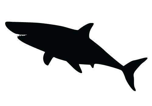 Shark Vector Graphics Free Download Shark Silhouette Vectors Shark Silhouette Animal Silhouette Animal Stencil Patterns