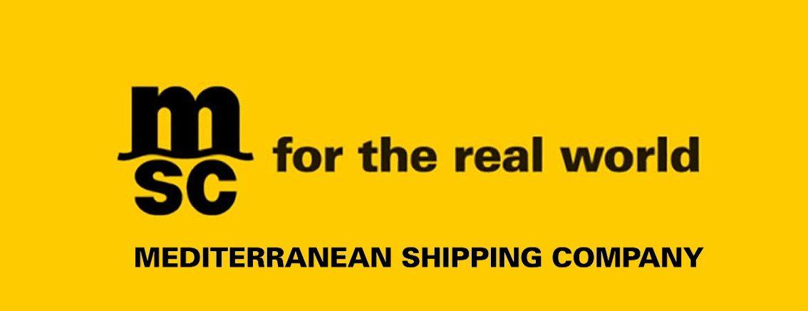Mediterranean Shipping Company logo | All logos world in 2019